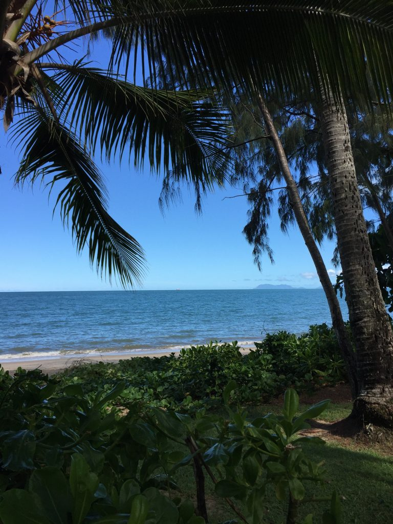 lawn, trees, beach and ocean in Palm Cove