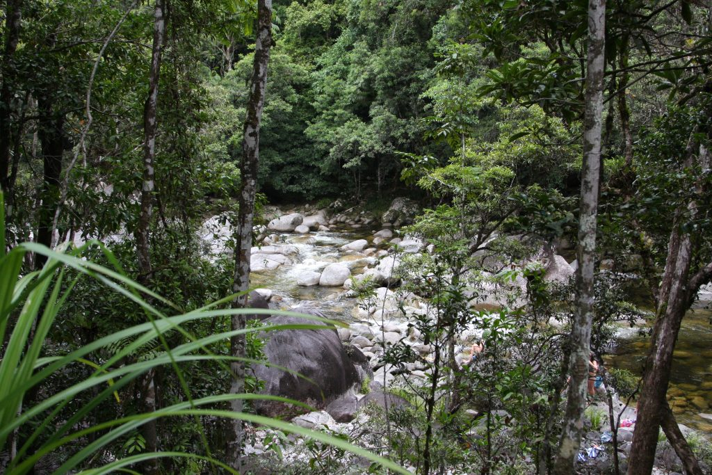 people swimming in the water at Mossman Gorge