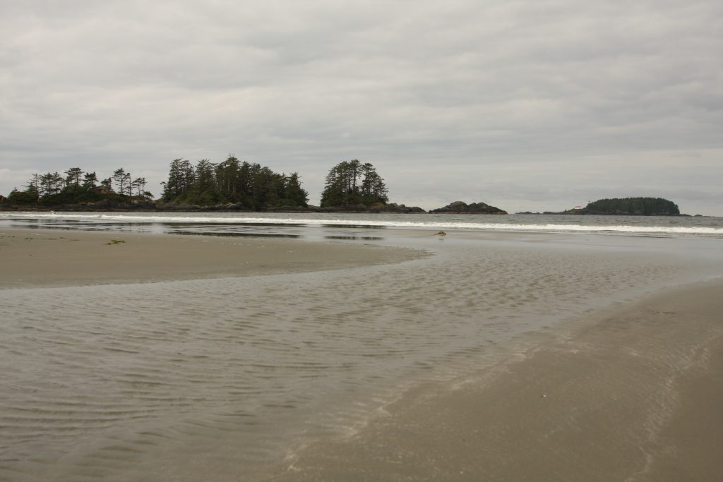 view of the Beach and the Ocean in Tofino