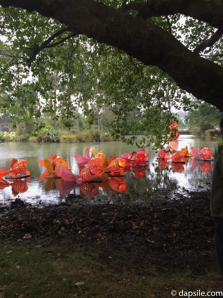 Fish Lanterns in Pond at Christchurch Lantern Festival