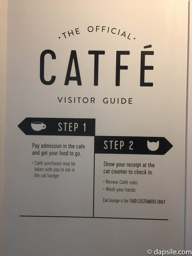 Catfe Visitor Guide posted on the wall