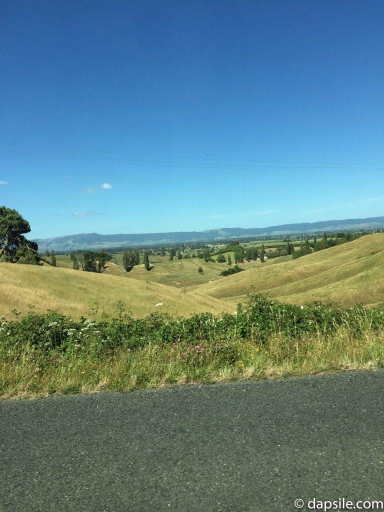 Rolling Hills near Hobbiton