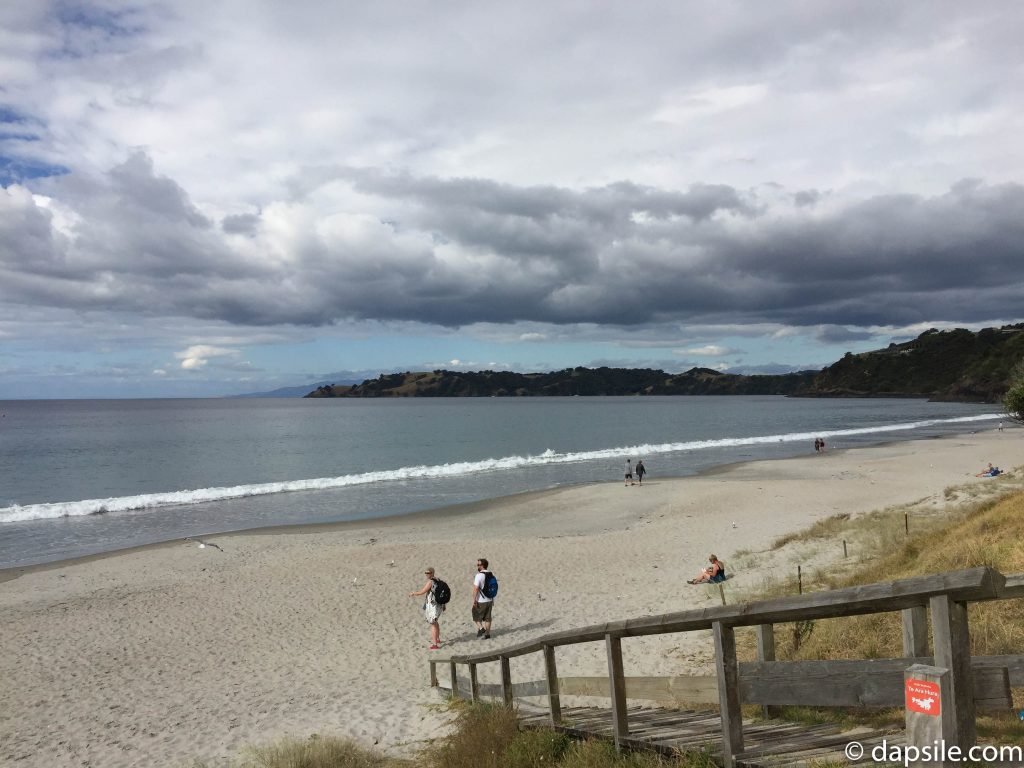 One of the Beaches on Waiheke Island